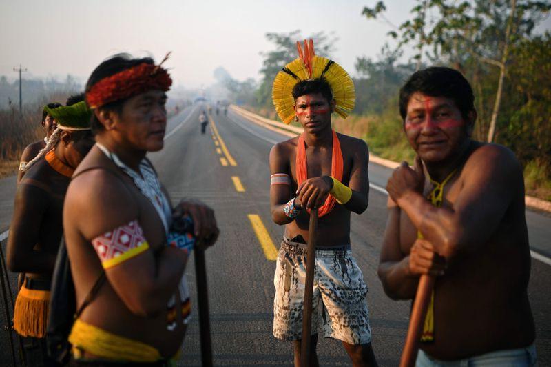 BRAZIL AMAZON5-1597682126018