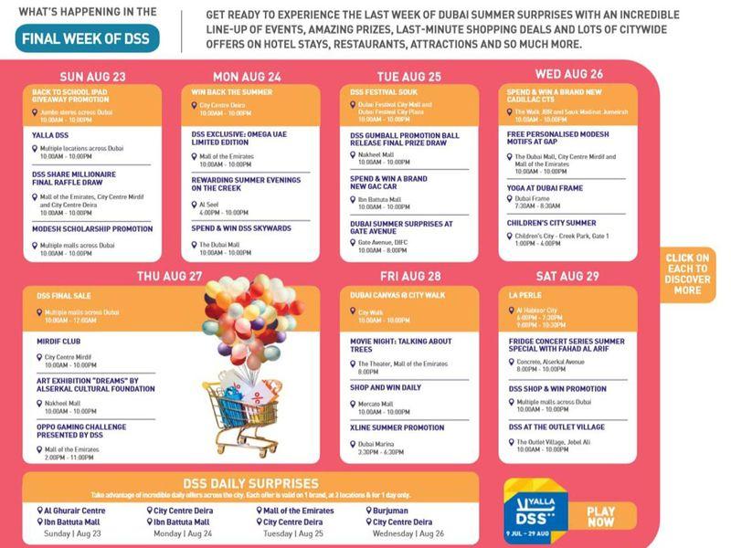 DSS schedule
