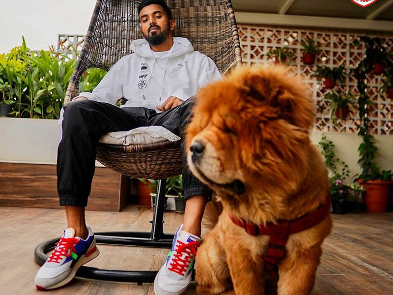 But last mention has to go to Punjab star KL Rahul's best pal Simba, arguably India's most famous dog. Happy International Dog Day to all.