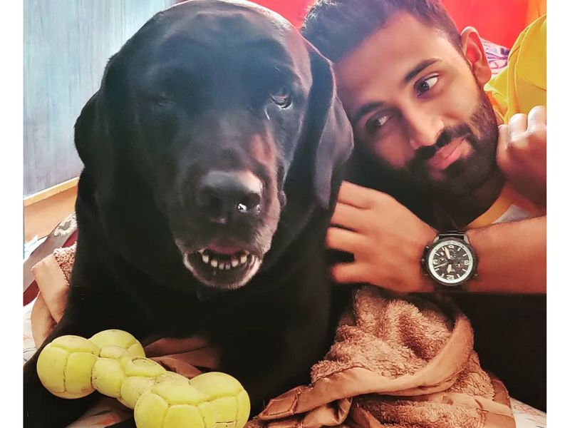 Canine companions rate highly among the Indian Premier League players, and many of them took time out during their preparations for the competition in the UAE on International Dog Day to pay tribute to man's best friend. Shreyas Gopal of Rajasthan Royals described them as 'my favourite people'.
