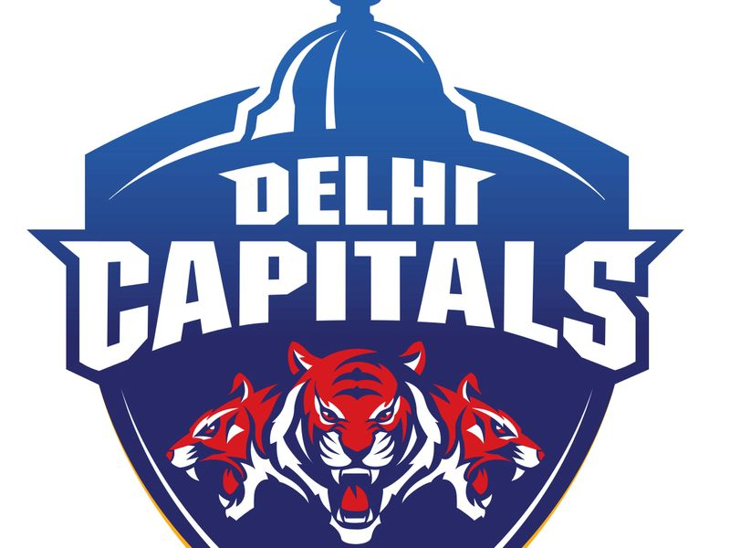 IPL-Delhi logo