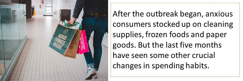 What spending habits changed during COVID-19