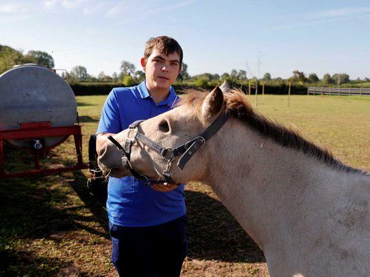 France horse injured