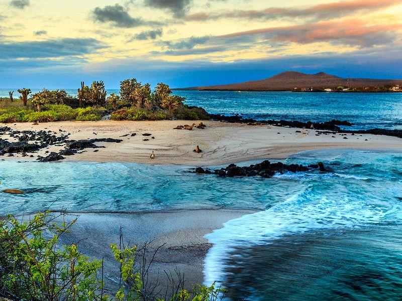 NAT Galapagos Credit_Rene Holtslag_S1-1599479482672