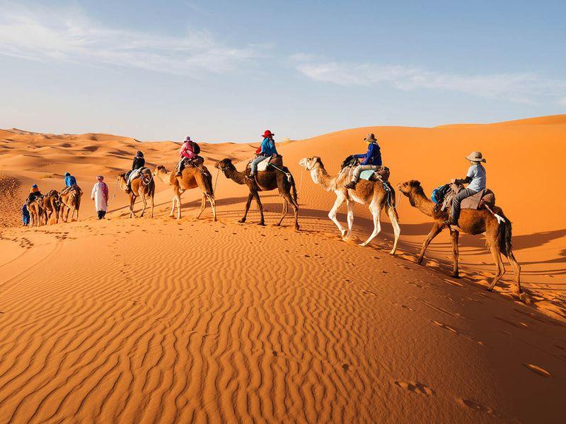 NAT Sahara 55-1599479470296