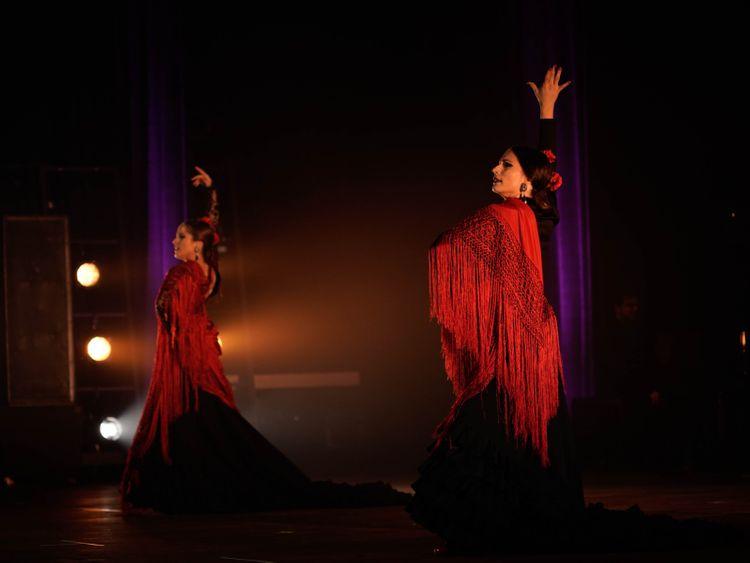 Flamenco Passion 1 (2)-1599736273735