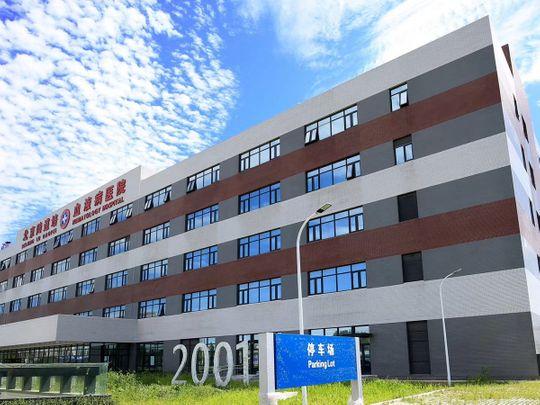 Lu Daopei Medical Group