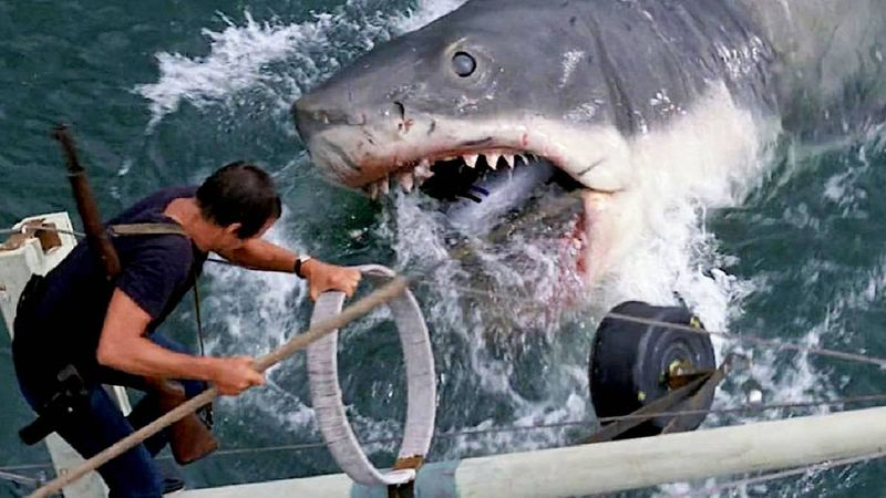 Jaws44-1600350553393