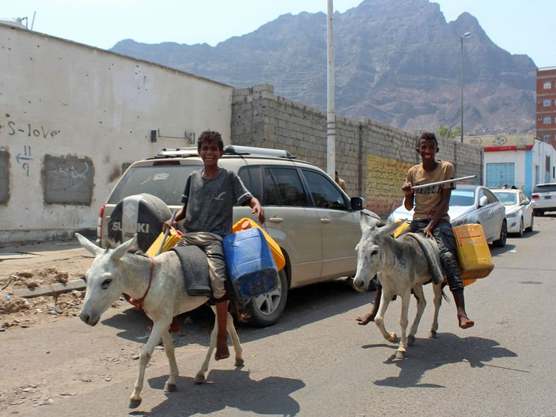Yemen donkey trade gallery