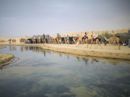 Dubai Tourist Camp