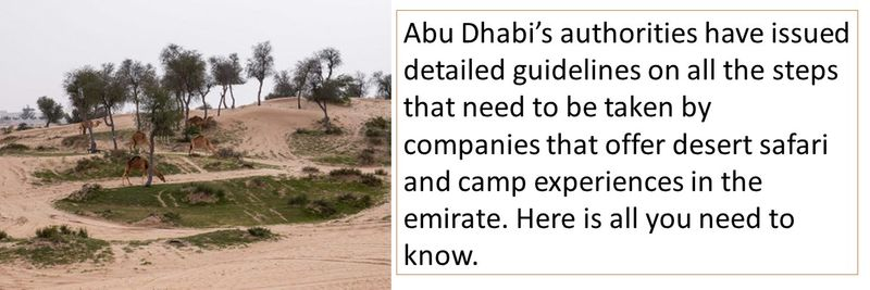 Abu Dhabi's guidelines for operators