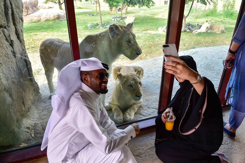 Dubai Safar