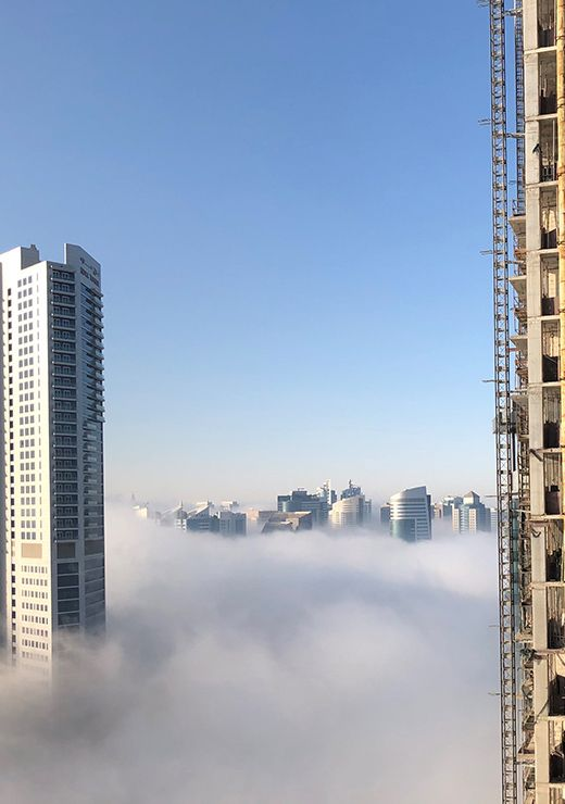 reader picture fog weather