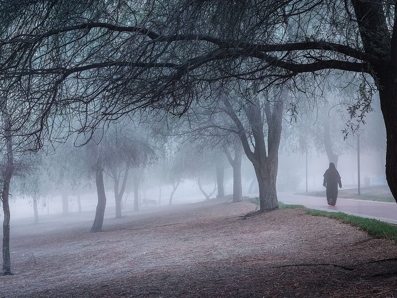 reader pictures fog weather