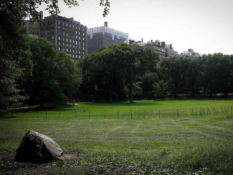 20200923 central park us