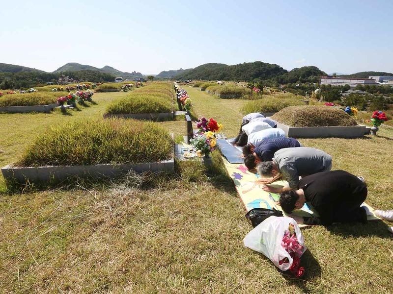 Chuseok gallery