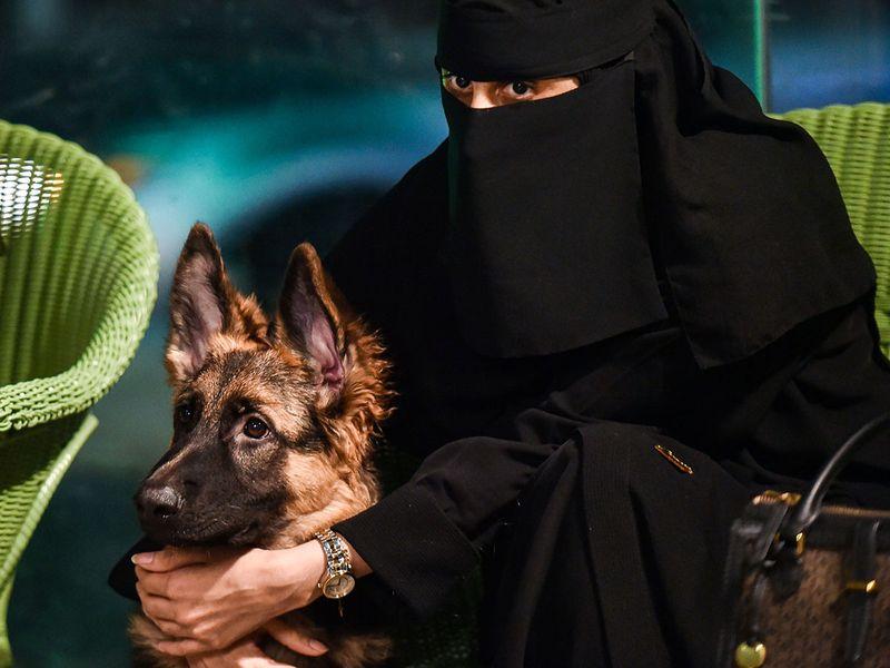Saudi Barking Lot gallery