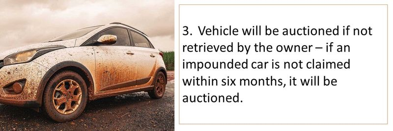3. Vehicle will be auctioned if not retrieved by the owner
