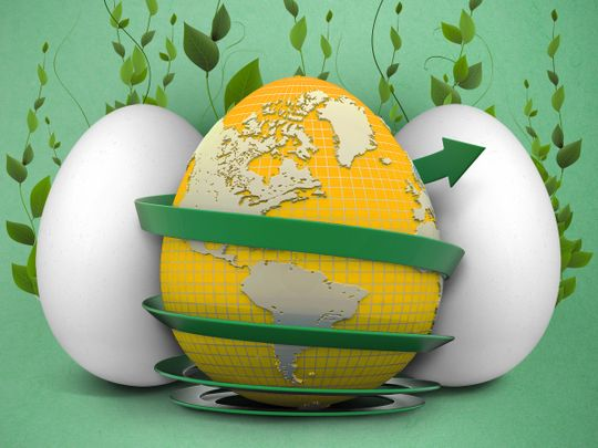Eggs - a sustainable choice of food