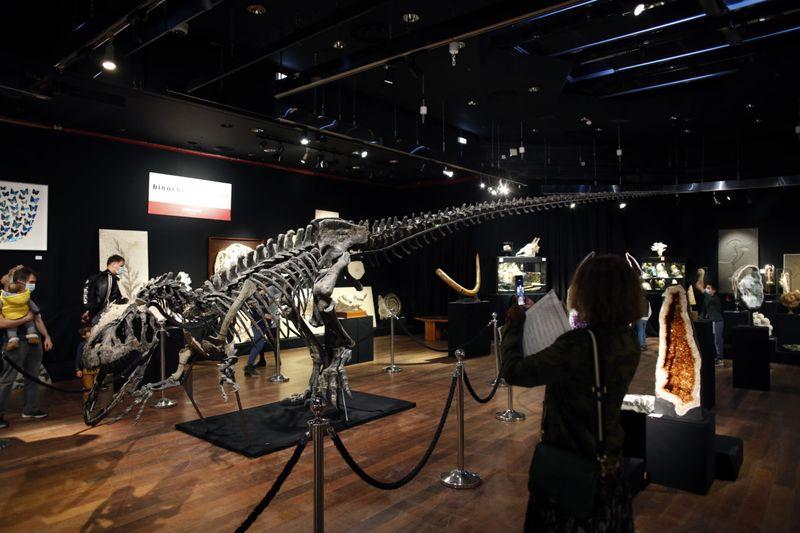 Copy of France_Dinosaur_Auction_20917.jpg-07c15 [1]-1602673822413