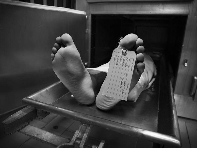 dead morgue generic