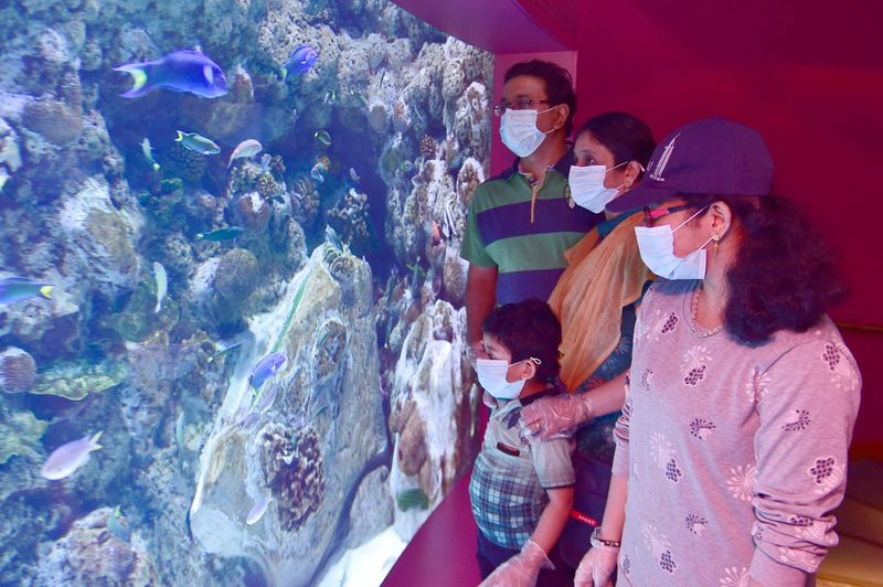 A family vising one of the exhibits at the museum.