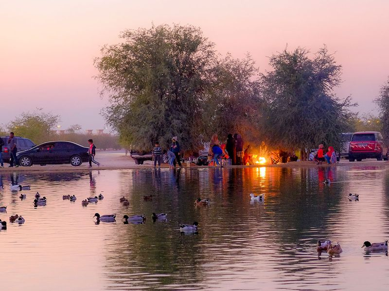 UAE: Check out these cool camping spots   Going-out – Gulf News