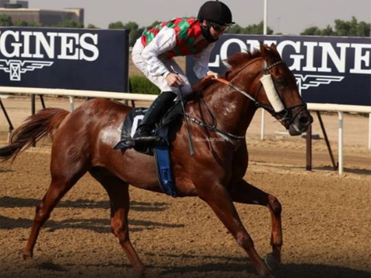 Sharjah Racecourse has an event-filled season opener
