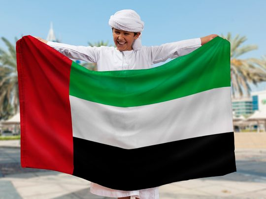 UAE flag colours explained