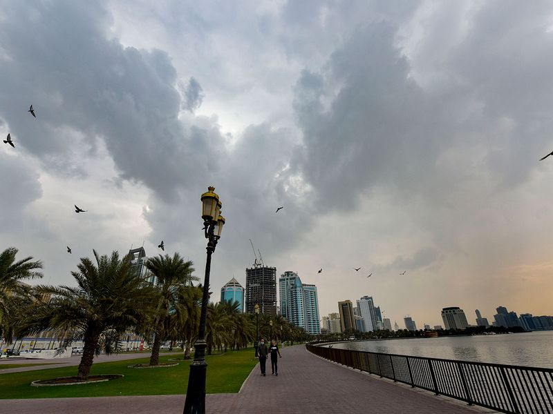 Rain in Sharjah