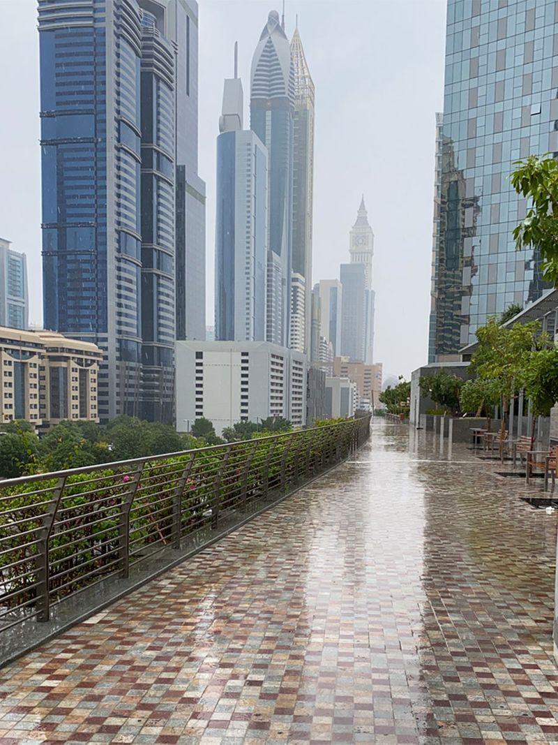 UAE rain Anis Uddin