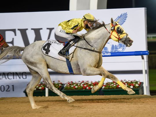 Jayide Al Boraq, ridden by jockey Bernardo Pinheiro wins the Bani Yas race sponsored by Gulf News at Meydan