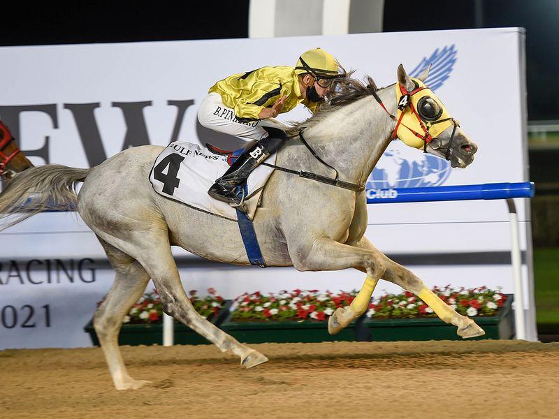 Jayide Al Boraq, ridden by jockey Bernardo Pinheiro wins the Bani Yas race sponsored by Gulf News at Meydan