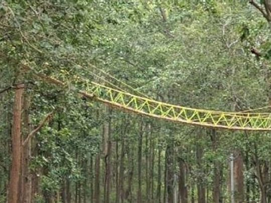 The 90-foot-long structure of bamboo, jute, and grass was built across the two-lane Kaladhungi-Nainital highway