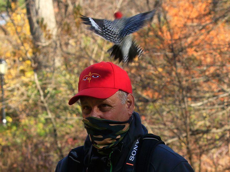20201202 birding bob
