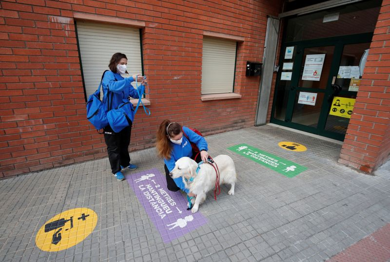 Copy of 2020-12-01T094614Z_1525835787_RC29EK93EE4O_RTRMADP_3_HEALTH-CORONAVIRUS-SPAIN-THERAPY-DOGS-1606899601051