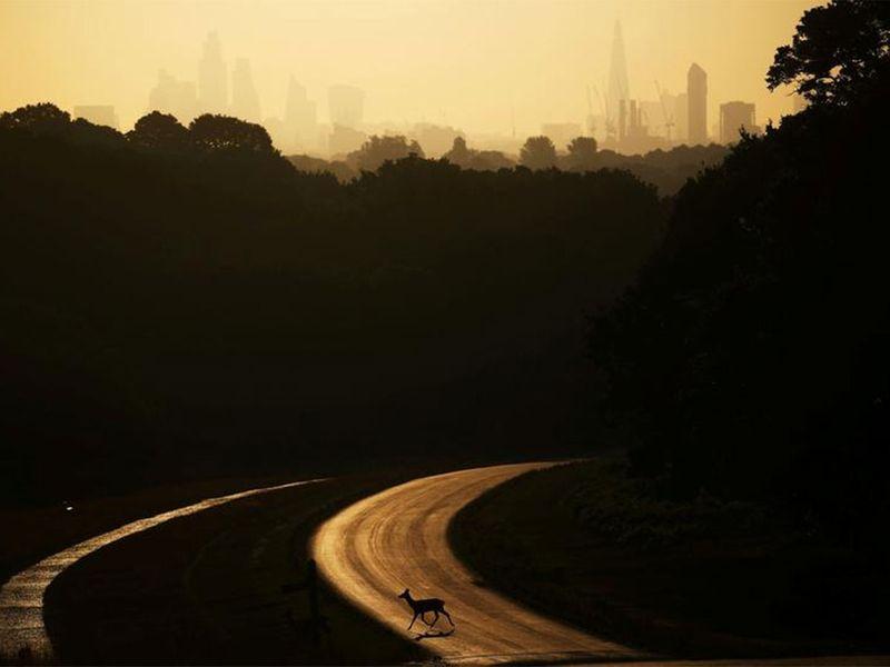 20201203 top pic landscapes