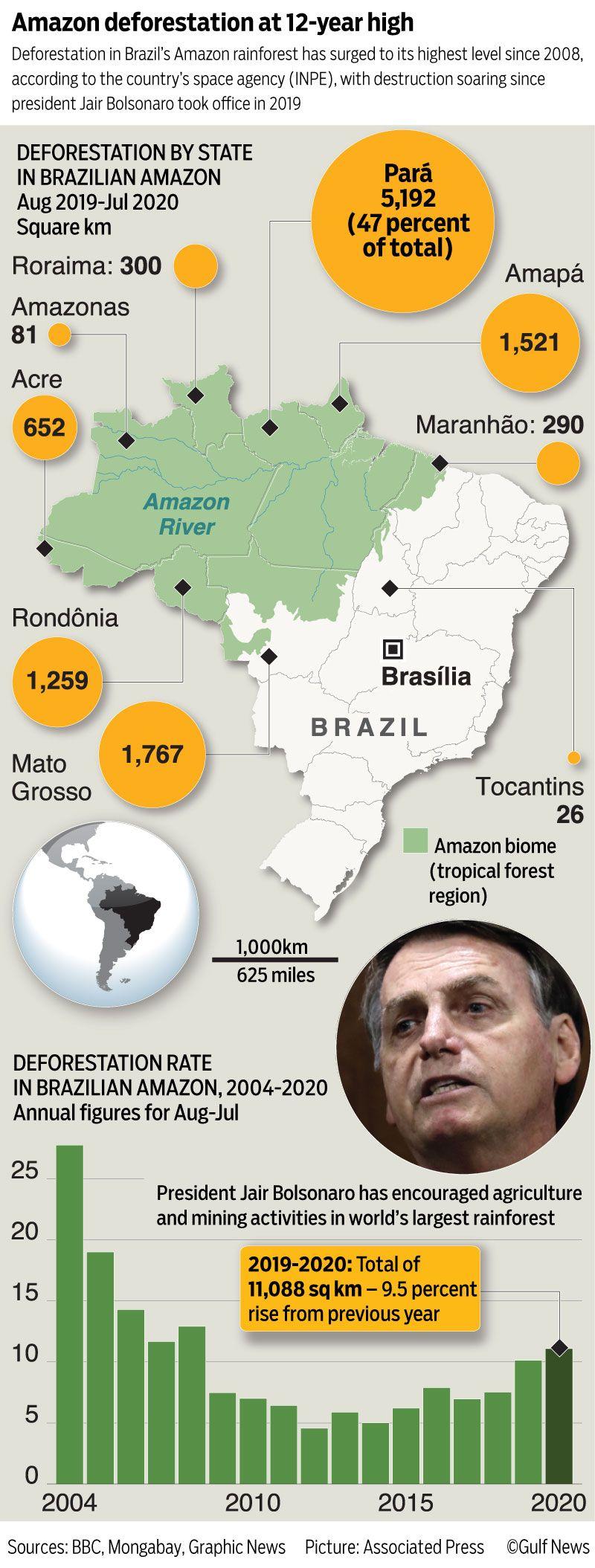 Amazon deforestation graphic
