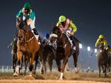 Meydan racing