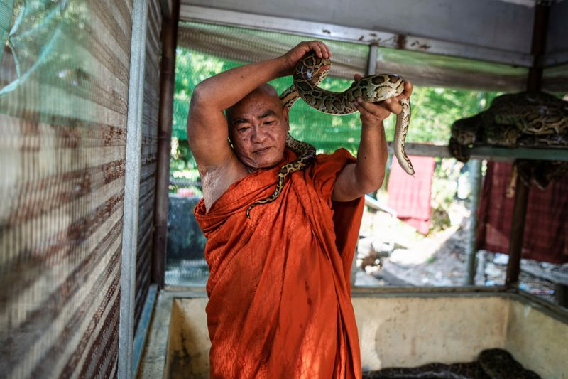 Copy of 2020-12-04T010749Z_119431650_RC21GK99YAI6_RTRMADP_3_MYANMAR-MONK-SNAKES-1607065194735
