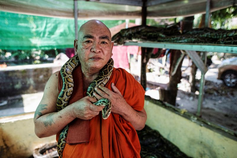 Copy of 2020-12-04T010812Z_722371162_RC21GK9NHMH0_RTRMADP_3_MYANMAR-MONK-SNAKES-1607065198420