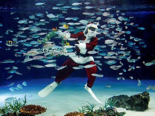 Santa Claus Japan fish tank aquarium