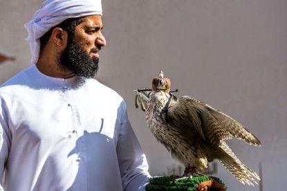 sharjah falcon-1607065344968