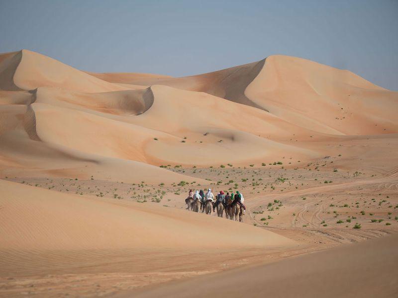 Camel track 8