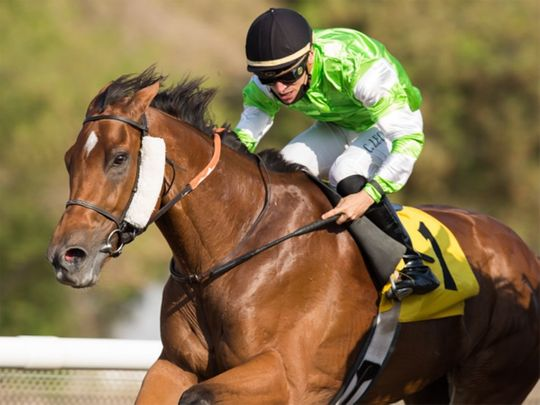 Clement Lecoeuvre and Blue Sovereign win the Shadwell Condition Stakes, the feature race of the afternoon at Jebel Ali Racecourse on Friday.