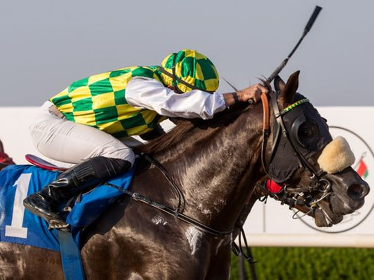 Jawaal, ridden by Fernando Jara, wins the Sheikh Mansoor Bin Zayed Al Nahyan Cup at Sharjah Racecourse