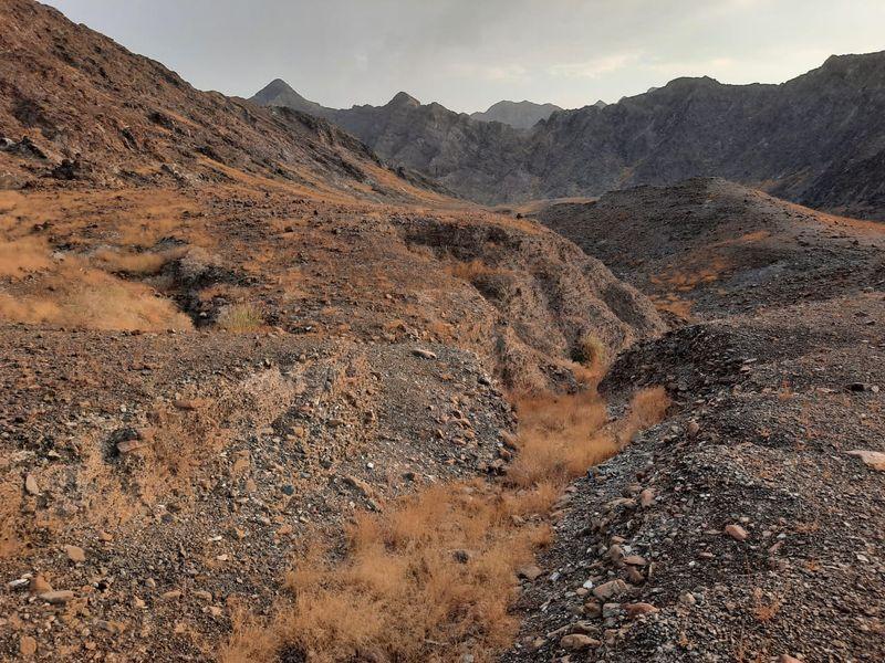 Wadi Aasimah