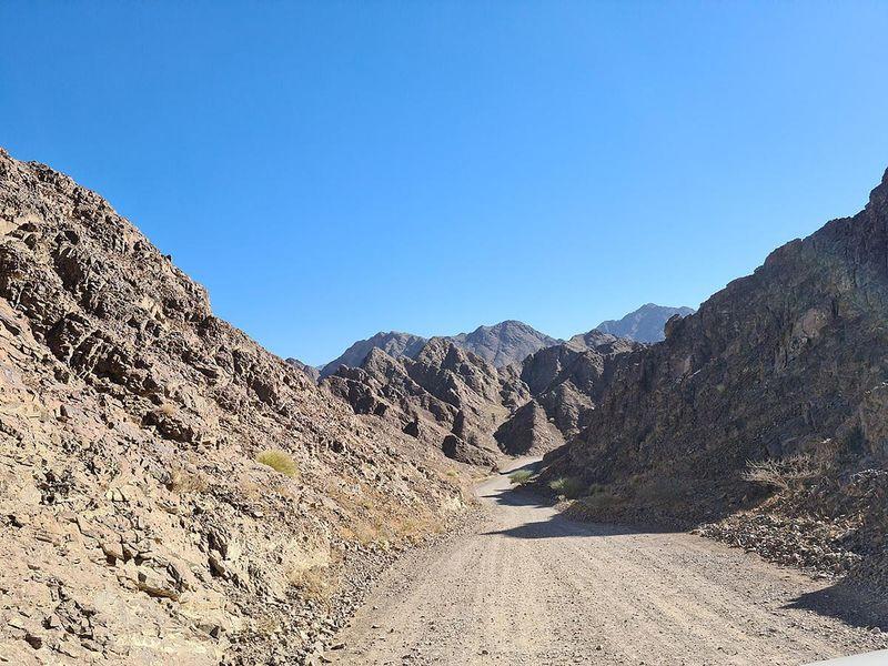 Wadi Showka