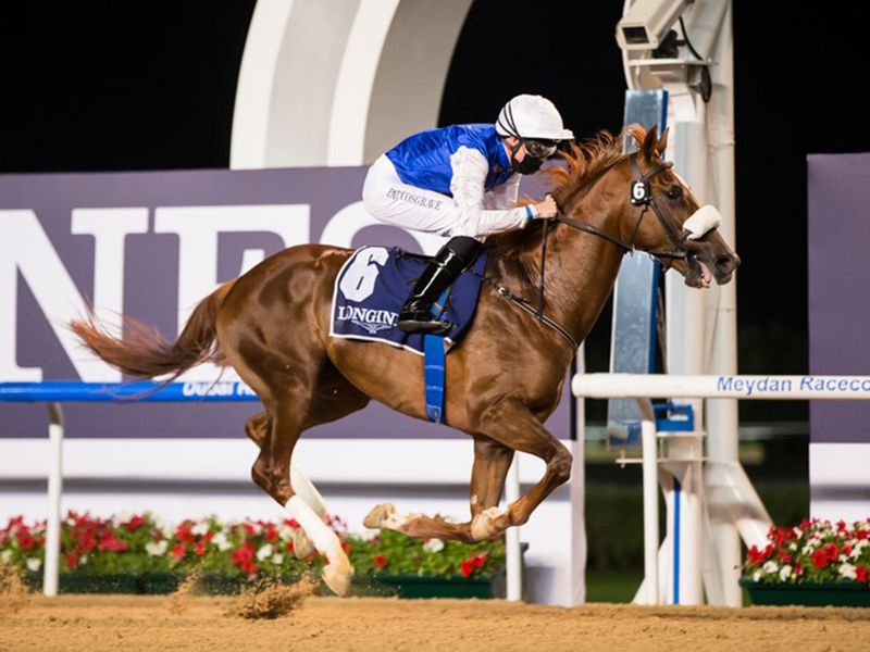 Rb Frynchh Dude lands The Madjani Stakes