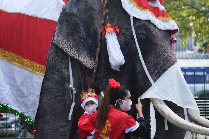Copy of 2020-12-23T043854Z_1299269888_RC2SSK9ACDEC_RTRMADP_3_HEALTH-CORONAVIRUS-THAILAND-CHRISTMAS-ELEPHANTS-1608719182160